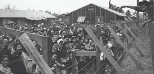 Many Japanese people crammed together behind barbed wire in American prison internment camps during world war II